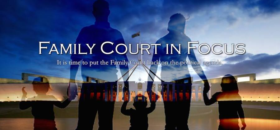 family court in focus - 2015