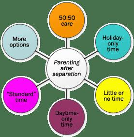 Parenting Plan Model - Causes 2015