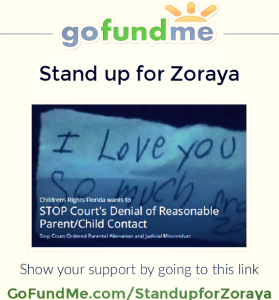 Go Fund Me 1 - Stand up for Zoraya - 2015